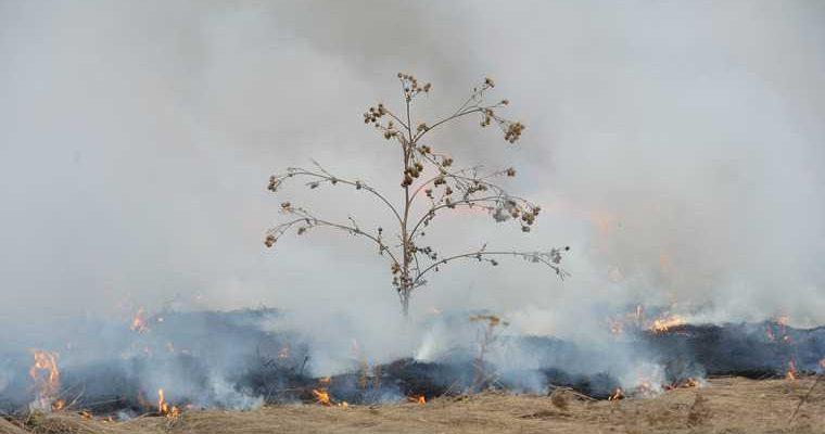 пожар Денежкин камень свердловская область причины расследование видео