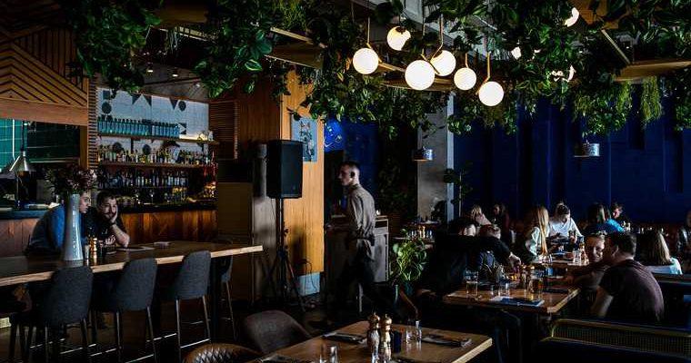 Сколько кафе и ресторанов открылись в Тюменской области
