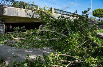 Екатеринбург ураган падение деревьев