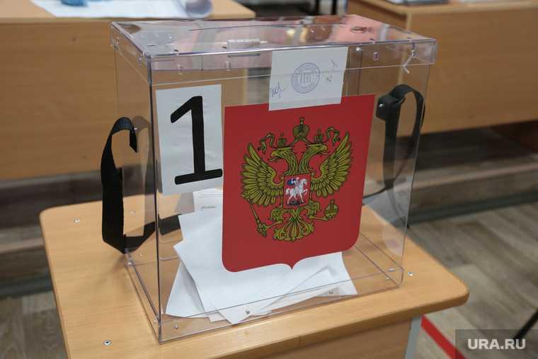 довыборы Махнево день голосования