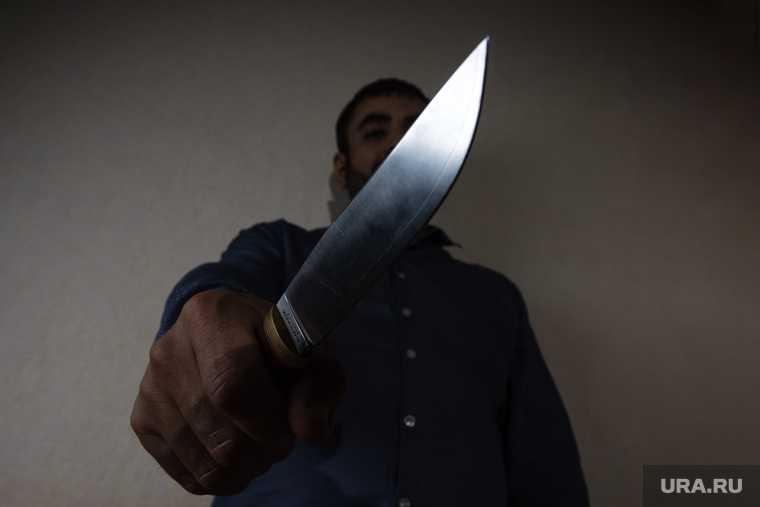 Тюменская область нож преступник супруга
