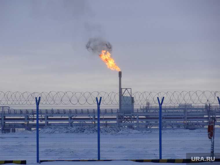 горячая линия прокуратура ЯНАО нарушения прав вахтовиков Газпром