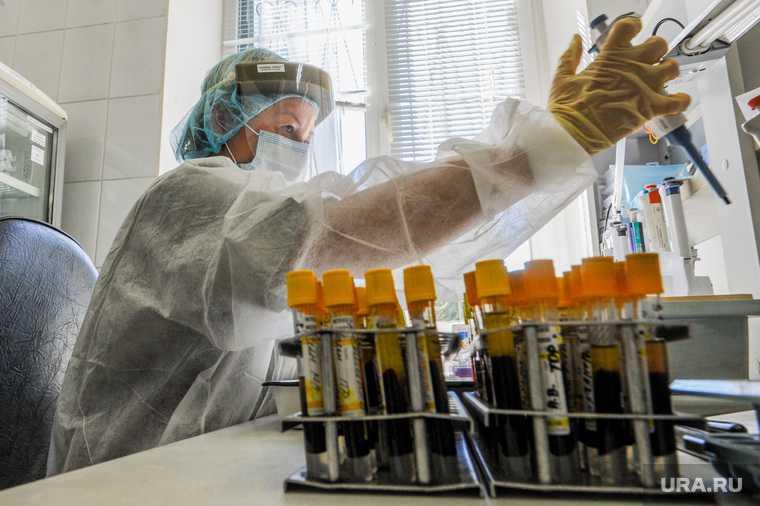 вирусолог рассказал о спаде заболеваемости коронавирусом
