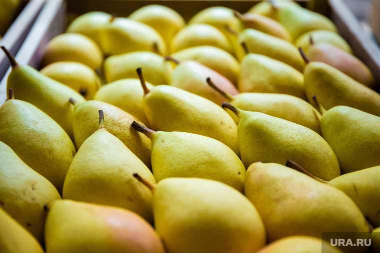 средство от похмелья печеные яблоки груши