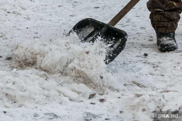 Калужский губернатор вышел убирать снег
