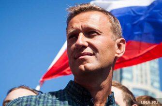 Навальный сизо кобзев этапирован
